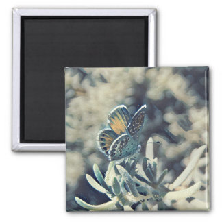 Painterly Butterfly Magnet