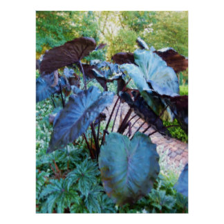Painterly Elephant Ear Leaf Reflections Poster