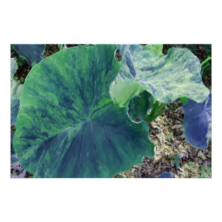 Painterly Watercolor Blue-Green Elephant Ears Poster