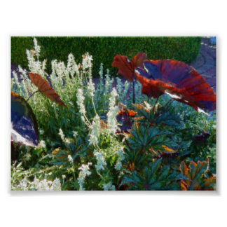Painterly Watercolor Red Elephant Ears 36x27  Inch Poster