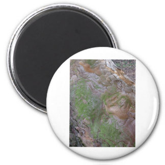 Painting By Nature 2 Inch Round Magnet