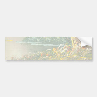 Painting Of A Fall River Scene Bumper Sticker