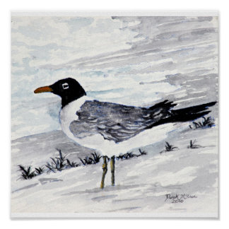 paintings and prints of seagulls beach art