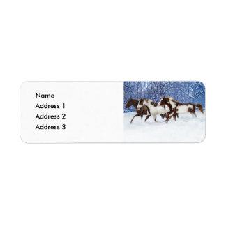 Paints In Winter, Address 3, Address 2, Address...