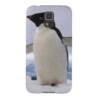 Pair Adelie penguins Antarctica Galaxy S5 Covers