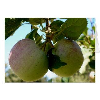 Pair of apples card