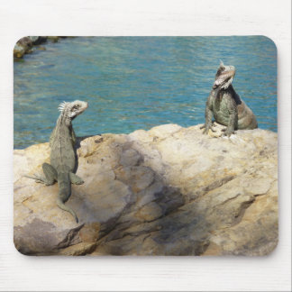 Pair of Iguanas Tropical Wildlife Photography Mouse Pad