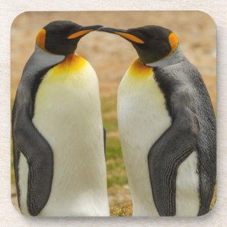 Pair of King Penguins, Falklands Coaster