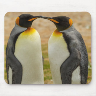 Pair of King Penguins, Falklands Mouse Pad