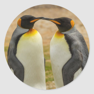 Pair of King Penguins, Falklands Round Sticker