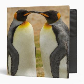 Pair of King Penguins, Falklands Vinyl Binders