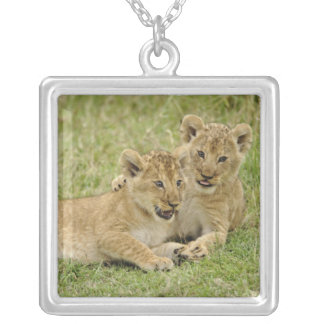 Pair of lion cubs playing, Masai Mara Game Silver Plated Necklace