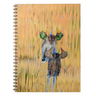 Pair of Mallards Notebooks
