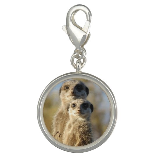 Pair of Meerkats Charms