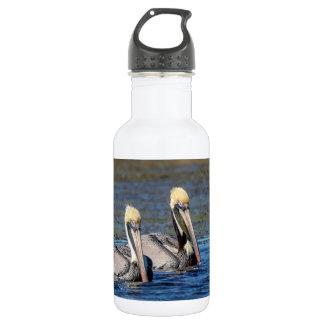Pair of Pelicans 532 Ml Water Bottle