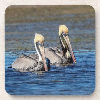 Pair of Pelicans Coaster