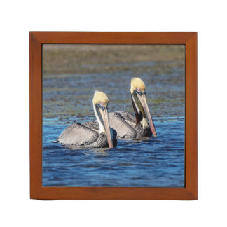 Pair of Pelicans Desk Organizer