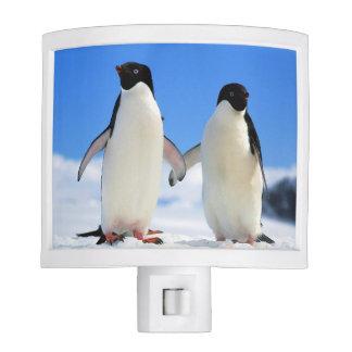 Pair of penguins nite lite