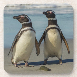Pair of penguins on the beach coaster