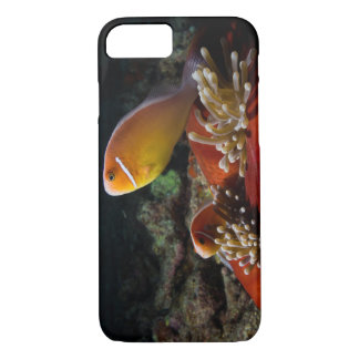 Pair of Pink Skunk Clownfish iPhone 7 Case