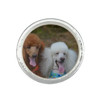 Pair of Poodles Ring
