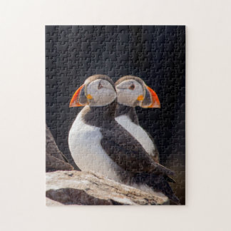 Pair of Puffins Jigsaw Puzzle