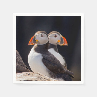 Pair of Puffins Paper Napkin