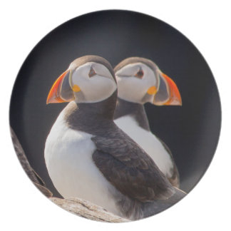 Pair of Puffins Plate