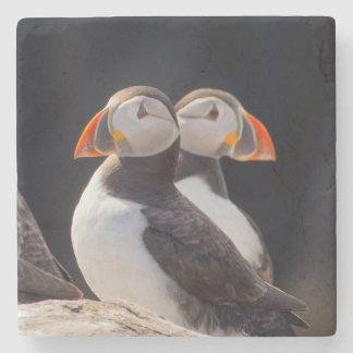 Pair of Puffins Stone Coaster