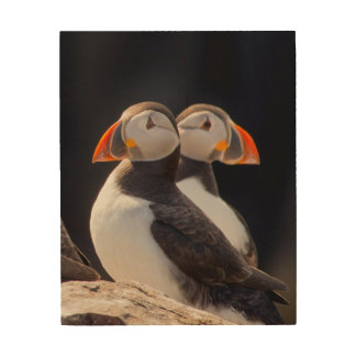 Pair of Puffins Wood Wall Decor