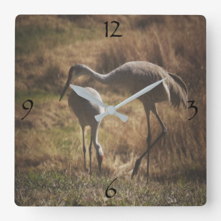 Pair of Sandhill Cranes biding time Square Wall Clock