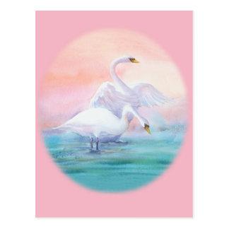 PAIR of SWAN by SHARON SHARPE Postcard