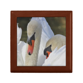 Pair of Swans Gift Box