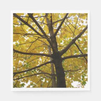 Pair of Yellow Maple Trees Autumn Nature Napkin