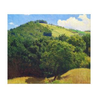 Pál Szinyei Merse Hills Canvas Print