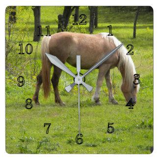 Palamino Horses Clocks