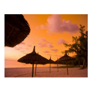 Palapa style beach huts at sunrise, Belle Mare 2 Postcard