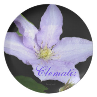 Pale Blue Clematis Plate