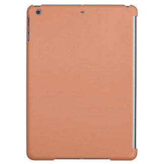 Pale Copper Modern Colored iPad Air Covers