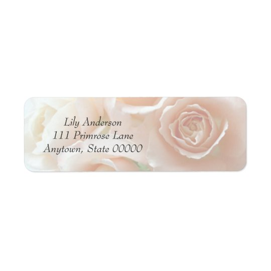 Pale coral roses full frame address label
