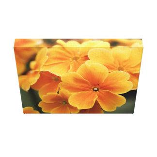 Pale orange petals canvas print
