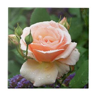 Pale orange rose & raindrops tiles