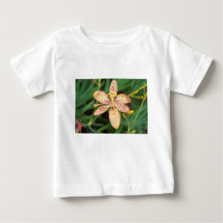 Pale orange spotted Blackberry lily Baby T-Shirt