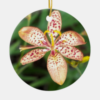 Pale orange spotted Blackberry lily Ceramic Ornament