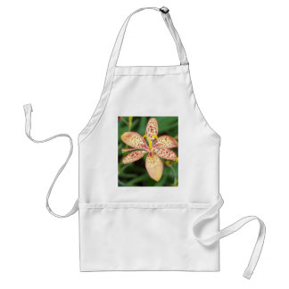 Pale orange spotted Blackberry lily Standard Apron
