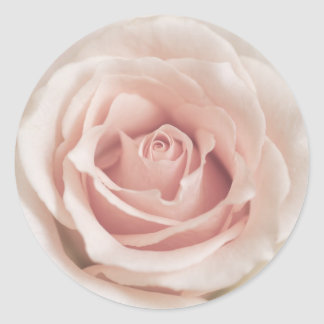 Pale Peach Antique Rose Background Customized Classic Round Sticker