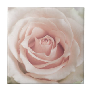 Pale Peach Antique Rose Background Customized Tile