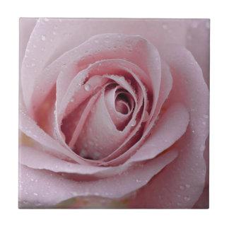 pale pink rose tiles