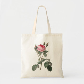 Pale pink vintage roses painting