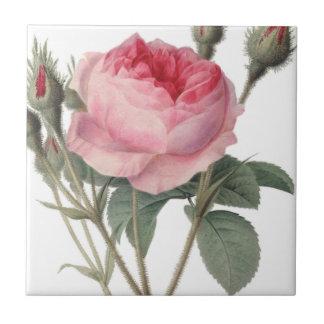 Pale pink vintage roses painting tiles